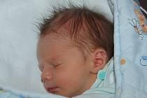 Ivě a Davidu Antonů z Litoměřic se 3.2. v 11.35 hodin narodil  v Litoměřicích syn Patrik Antonů (48 cm, 2,56 kg).