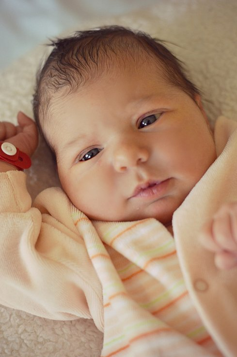 Janě Krobotové a Martinu Faustovi z Bechlína se 3.2. v 1:48 hodin narodila v Roudnici n.L. dcera Denisa Renata Faustová (3,88 kg a 54 cm).