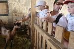 Stovky zájemců dorazili do držovické kozí farmy na den otevřených dveří.