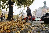 Úklid listí na litoměřickém náměstí
