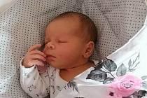 Michaele a Miloslavu Zlesákovým se ve středu 30. června  v 7:53 hodin narodila dcera Natálie Zlesáková. Měřila 49 cm a vážila 3,65 kg.