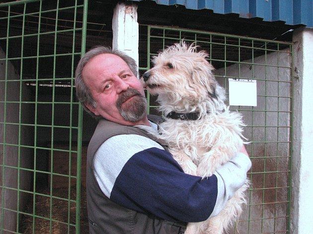 Miroslav Mrhal ve svém útulku v Hněvicích momentálně pečuje o 23 bezprizorních psů různých plemen.