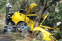 Smrtelná dopravní nehoda u Křesína.