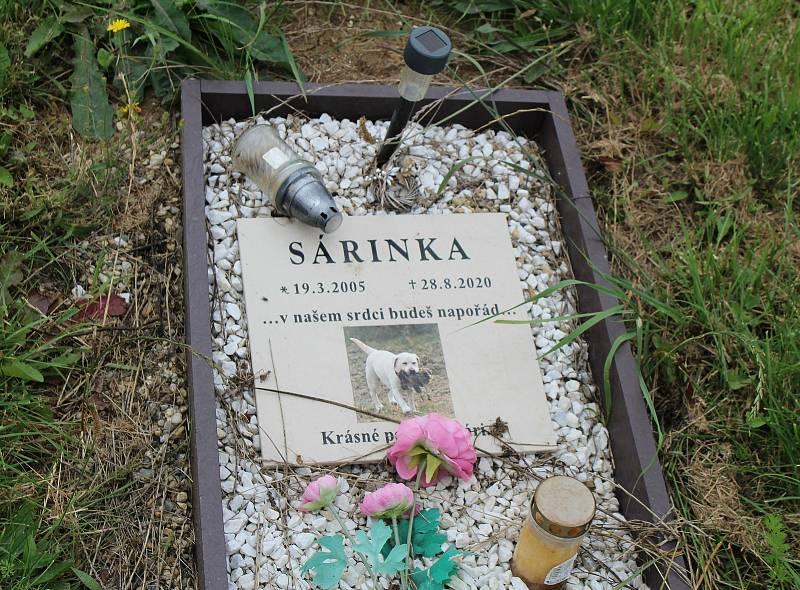 Zvířecí hřbitov na úpatí hory Říp u Vražkova