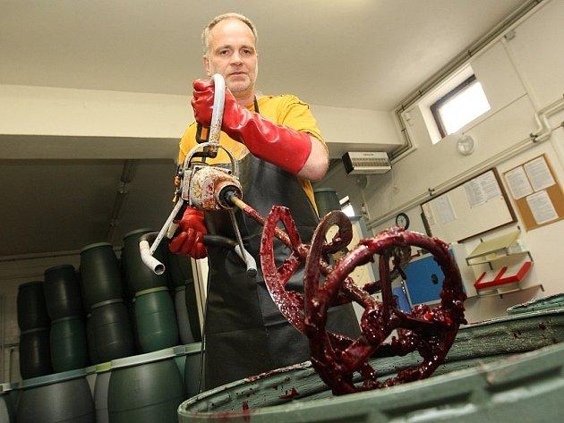 KVAS. V současné době Žitenická palírna přijímá zralé ovoce. Na snímku je Jan Härting při zpracování kvasu z letošní úrody višní. Přibližně za čtrnáct dní začnou v Žitenicích s prvním pálením v tomto roce.