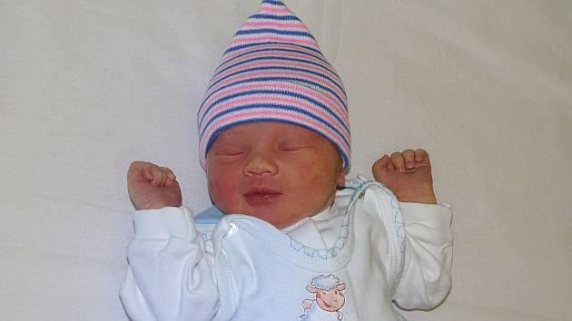 Ben budaj se narodil Michaele Šperlingové a Radoslavu Budajovi z Litoměřic 28. listopadu v 6.55 hodin v Litoměřicích. Měřil 53 cm a vážil 3,33 kg.