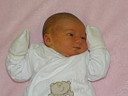 Charlotte Štujberová se narodila Veronice Štujberové z Litoměřic  6.11. v 4.32 hodin v Litoměřicích (2,94 kg a 49 cm).