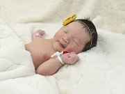 Nandin Erdene Khatanbaatar se narodila Oyundari Ganbaatar a Erdenebaatar Khatanbaatar z Roudnice n .L. 21.3. v 6:02 hodin v Roudnici n.L. (3,4 kg a 56 cm).