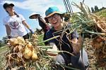 Dobrovolníci z celého světa pomáhají při zemědělských pracích na Svobodném statku v Českých Kopistech