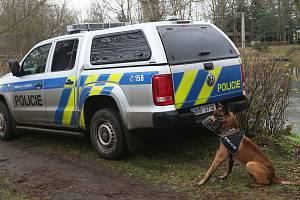 Policejní psovod. Ilustrační foto.