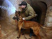 Soustředění psovodů