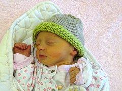 Anna Vocásková se narodila Haně a Jiřímu  Vocáskovým z Litoměřic 15.11. v 16:53 hodin  v Litoměřicích (47 cm a 2,68 kg).