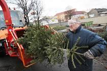 Technické služby města Lovosice při uklízení vánočních stromků.