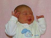 Klára Koubová se narodila Veronice a Jiřímu Koubovým  z Lovosic 29.11. v 13.34 hodin  v Litoměřicích.  Měřila 50 cm a vážila 3,4 kg.