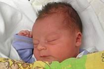 Marcele a Tomáši Zemanovým z Libochovan se 22. března v 11 hodin narodil v Litoměřicích syn Josef Zeman (52 cm, 3,82 kg).