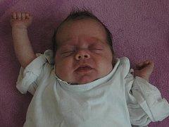 Veronice Trpišovské se 27. března ve 2:41 hodin narodila v Ústí n.L dcera Viktorie Trpišovská (40 cm, 1,48 kg).