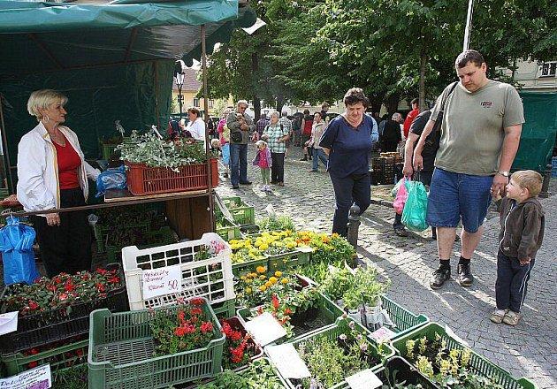 Farmářské trhy v Litoměřicích, sobota 28. května 2011.