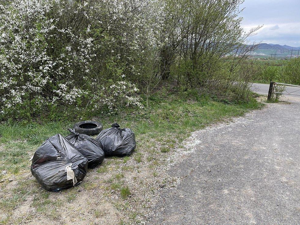 Zřícenina Windsor poblíž Siřejovic je oblíbeným výletním místem. V poslední době se tam ale začaly množit odpadky. Okolí se proto rozhodli uklidit zaměstnanci z nedaleké restaurace McDonald's a dobrovolníci.