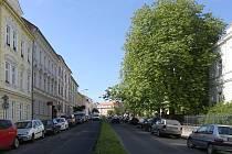 ZMĚŤ zbytků stromů, ostrůvků se zelení, aut. Nebezpečné přechody pro chodce, chodníky i vozovka v neutěšeném stavu. Tak vypadá Palachova ulice v Litoměřicích dnes.