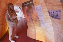 Maketa tlustého střeva varovala před rakovinou v Litoměřicích