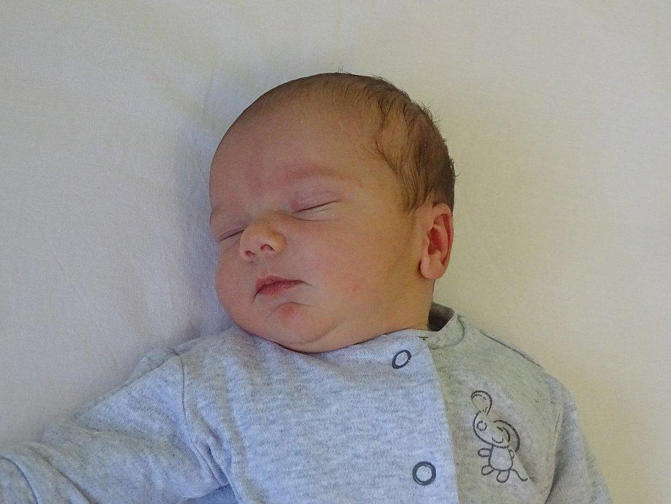 Jan Vajdl se narodil Michale a Tomáši Vajdlovým z Lovosic 28.1.2019 v 9.30 hodin v Litoměřicích (51 cm a 3,34 kg).