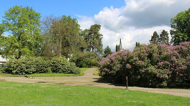 Zámecký park v Ploskovicích