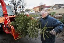 Vánoční stromky, kterých se začnou lidé po Třech králích zbavovat budou od kontejnerových stání odvážet technické služby k likvidaci štěpkováním.