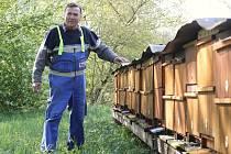 Včelař Petr Musil ze Žitenic prohlíží jedno ze svých stanovišť včelstev u Staňkovic. Jejich síla po zimě není rovnoměrná, ale postupně se vyrovnává. První stáčení medu by podle jeho názoru mělo proběhnout už koncem května.