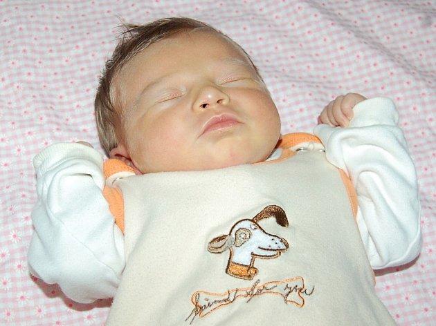 Lence a Miroslavu Pajonkovým z Třebenic se 9.9. ve 2.55 hodin narodila v Litoměřicích dcera Markéta (50 cm, 3,37 kg).