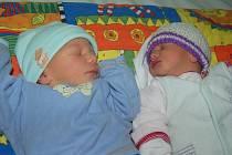 Tereze a Josefu Jůnovým z České Lípy se 15.1. v 17.42 a 17.43 hodin  narodila v litoměřické porodnici dvojčata Richard Jůna (49 cm, 2,87)  a Ellen Jůnová (45 cm, 2,21 kg).
