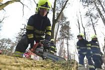 Silný vítr zaměstnal hasiče na Litoměřicku.