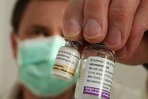 Vakcína proti prasečí chřipce je na Litoměřicku.