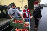 Zemědělci z Klapého věnovali jablka potřebným. V pátek si pro darovaná jablíčka přijeli z litoměřické charity