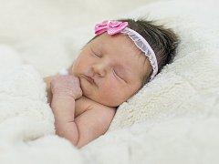Anežka Svobodová se narodila Tereze a Davidu Svobodovým ze Štětí 17.2. v 8.25 hodin v Roudnici n.L. (2,95 kg a 49 cm).