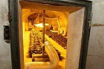 Odhalená pěstírna marihuany v Terezíně