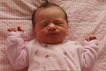 Barboře Johanovské a Martinovi Volákovi z Litoměřic se 21. května v 10.39 hodin narodila v Litoměřicích dcera Viktorka Johanovská. Měřila 46 cm a vážila 2,39 kg.