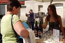 Pivní slavnosti v Litoměřicích 2012.
