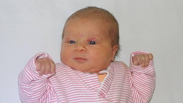 Sára Štěpánková se narodila Jaroslavě Boneschové a Ondřeji Štěpánkovi z Litoměřic  14.2. v 21.04 hodin v Litoměřicích (3,15 kg a 48 cm).