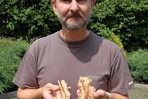 Pavel Ptáček, pracovník Lesní správy Litoměřice, ukazuje čerstvé vzorky kůry napadené kůrovcem.