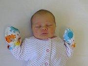Valerie Grundová se narodila Monice a Josefu Grundovým z Martiněvsi 30.1.2019 v 1.50 hodin v Litoměřicích (49 cm a 2,99 kg).