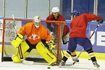 Litoměřičtí hokejisté zahájili přípravu na prvoligovou sezonu.