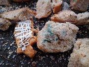 Lidé se neostýchají vodním ptákům nabídnout obložené chlebíčky nebo plesnivé pečivo.
