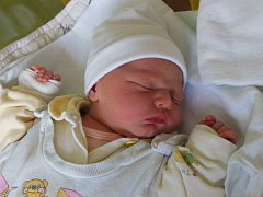 Lence Rosenkrancové a Zdeňku Gerstbergerovi z Litoměřic se 25.7. ve 3.40 hodin narodila v Litoměřicích dcera Tereza Gerstbergerová (49 cm, 3,24 kg.)