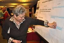 Veřejné diskuzní fórum s názvem Desatero problémů Litoměřic.