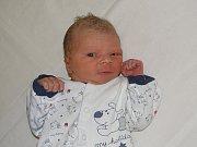 Jindřich Pitel´se narodil Monice Tylové a Janu Pitel´ovi z Lovosic 12. prosince v 10.03 hodin v Litoměřicích. Měřil 52 cm a vážil 3,6 kg.