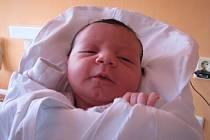 Kateřině Camci ze Smržovky se v roudnické porodnici 12. března ve 4.40 hodin narodila dcera Sára Camci (50 cm, 3,1 kg). Blahopřejeme!