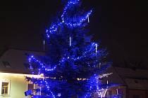 Vánoční strom v Hoštce.