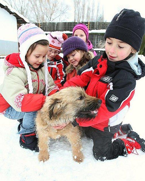 DĚTI ze základní školy v Lovosicích přivezly psům do útulku granule a pamlsky na Štědrý den, ale i peníze, které útulek potřebuje na veterinární služby. Potěšily zvířata také svou přítomností a pohlazením.