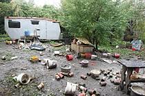 """CHOVNÁ STANICE? Takto vypadala zahrada v Litoměřicích ze které policisté v minulém roce odvezli několik zubožených psů. V kotcích s nimi byli i uhynulá zvířata. """"Chovatel"""" Ivan Novoselský štěňata prodával také v Ředhošti."""