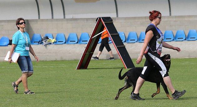 Příznivci sportovní kynologie soutěžili v areálu Pod Lipou v Roudnici nad Labem v Mistrovství ČR IPO.